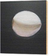 Egg In Space Wood Print