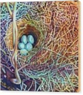 Eggs In A Basket Wood Print