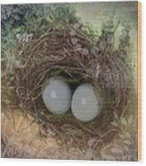 Eggs In A Nest Wood Print