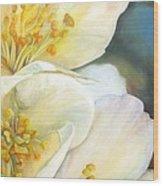 Eglantine Wood Print
