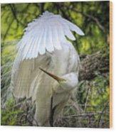 Egret - 2975 Wood Print