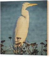 Egret At Dusk Wood Print