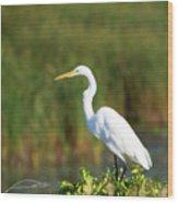 Egret At The River Wood Print