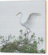 Egret Balance Wood Print