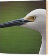 Egret Bird Wood Print