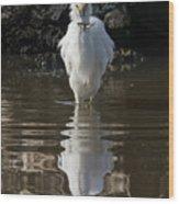 Egret Catches A Stickleback Wood Print