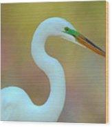 Egret Curves Wood Print