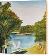 Egret Flying Over Texas Landscape Wood Print