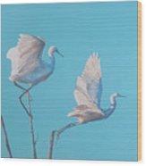 Egret Glide Wood Print