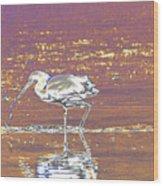 Egret II Wood Print