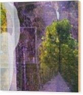 Egret In Passing Wood Print