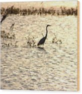 Egret In Sunset Water Wood Print