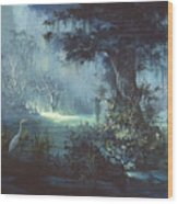 Egret In The Shadows Wood Print