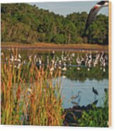 Egret Lake Wood Print