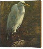 Egret On Branch Wood Print