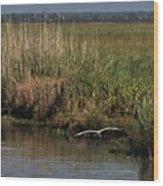 Egret On The Bayou Wood Print