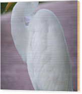 Egret Profile Wood Print