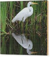 Egret Reflection Wood Print