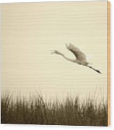 Egret Rising Wood Print