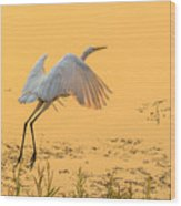 Egret Take Off 3 Wood Print