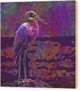 Egret White Bird Beach Wildlife  Wood Print