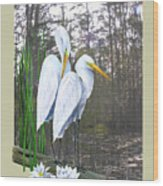Egrets And Cypress Pond Wood Print by Kevin Brant