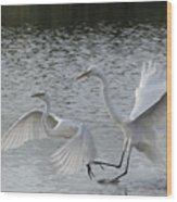 Egrets In Flight  Wood Print