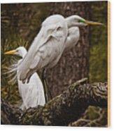 Egrets On A Branch Wood Print