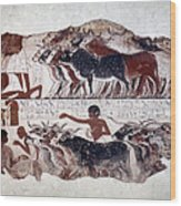 Egypt: Tomb Painting Wood Print
