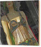 Egyptian Beauty Wood Print