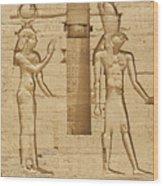 Egyptian Wall Carving Wood Print