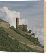 Ehrenfels Castle 04 Wood Print