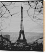 Eiffel Eyeful Wood Print
