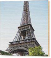 Eiffel Tower 4 Wood Print