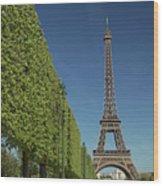 Eiffel Tower-9 Wood Print
