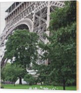 Eiffel Tower Garden Wood Print