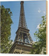 Eiffel Tower Through Trees Wood Print