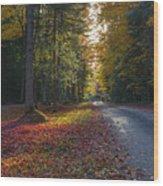 Eighth Lake Beckons Wood Print