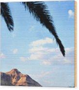 Ein Gedi Oasis In The Judean Desert Wood Print