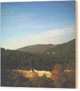 Ein-kerem Valley Wood Print