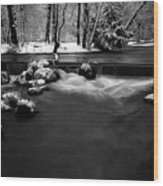 Eisbach In The Winter Wood Print