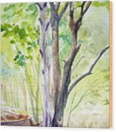 Ekant Park 10 Wood Print