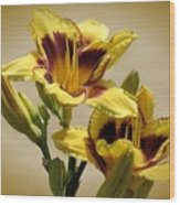 El Bandito Daylilies - Yellow  Wood Print
