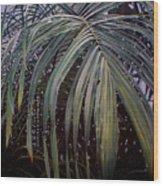 El Calor De La Selva Wood Print