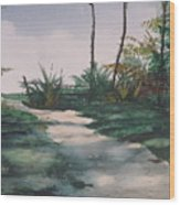 El Camino De La Manana Wood Print