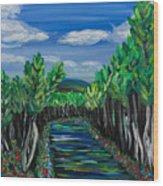 El Camino - El Verano - The Path - Summer Wood Print