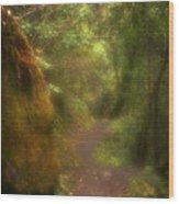 El Camino Wood Print
