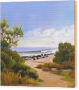 El Capitan Beach Wood Print