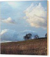 El Dorado Hills Skyscape Wood Print