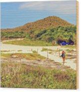 El Garrapatero Beach On Santa Cruz Island In Galapagos. Wood Print